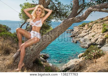 Beautiful Young Very Sexy Blond Hair Female Model Amazing Girl Lies On An Old Tree With An Amazing V