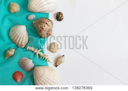 Shells and corals on a white wooden background. Flat lay. The top view.
