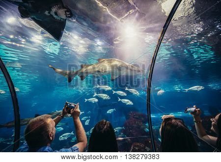 Barcelona Spain - May 26 2015. Tourists looks at shark in Barcelona Aquarium