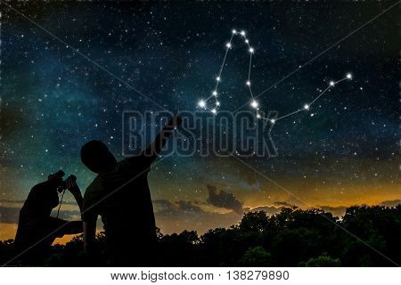 Dragon constellation. People are observing night sky.
