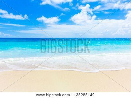 Shore Summertime Dream