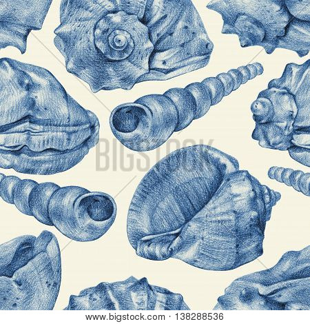 Seamless pattern with different seashells drawn by hand with pencil. Pencil sketch academic drawing. Summer sea theme