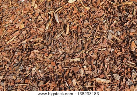Texture of Coarse dried Pine Bark Nuggets ideal for topping garden bed to retain moisture
