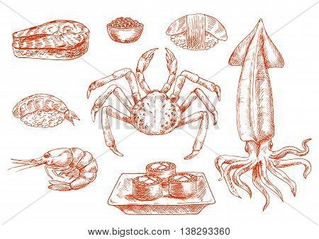 Sketch of raw seafood cuisine. Crab with claws and squid with tentacles, shrimp and salmon dish, rolls on board and sushi with rice, organic caviar or roe