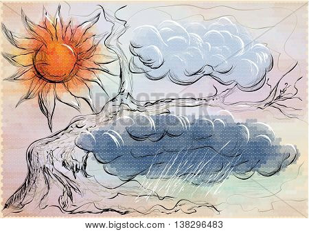 weather forecast background. abstract clouds and sun