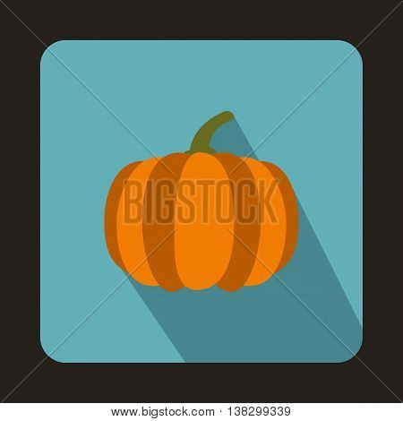 Pumpkin icon in flat style on a baby blue background