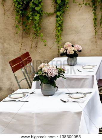 Rustic Celebratory Table Setting with Elegant Plates Silverware and Bunch of Pink Flowers in Tin Pots closeup on Stone Wall background with Creepers Outdoors. Focus on Foreground