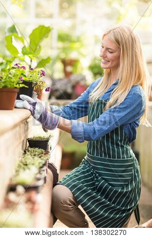 Happy female gardener keeping potted plant on retaining wall at greenhouse