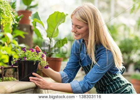 Young woman keeping potted flowering plant on retaining wall at greenhouse