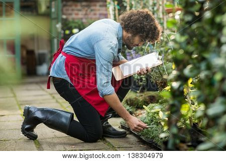 Side view of male gardener with clipboard working outside greenhouse