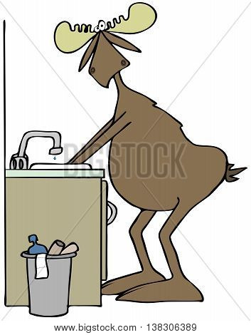 Illustration of a bull moose washing his hands  in a bathroom sink.