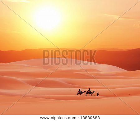 Camels caravan in Sahara desert
