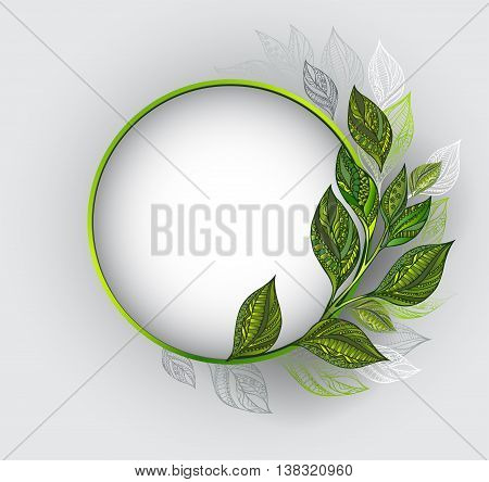 Round banner with a green frame decorated with patterned green and gray leaves of tea on a gray background. Tea design.