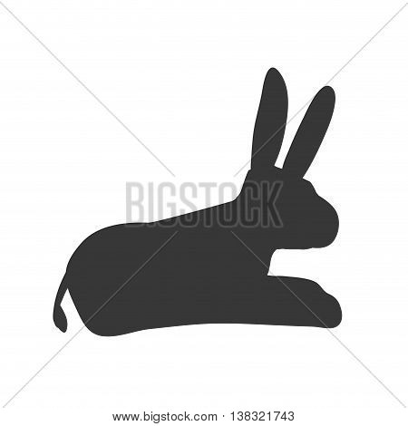 Animal concept represented by donkey icon. Isolated and flat illustration