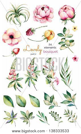 Foral collection with flower, peonies, leaves, branches, lupins, air plant,f ield bindweed, strawberry and more