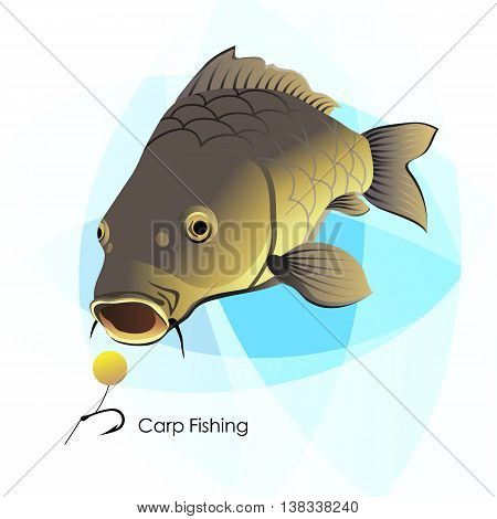 Carp Fishing, vector illustration, fish and lure