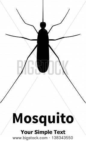 Vector illustration of black mosquito. Isolated on white background. Midge insect.