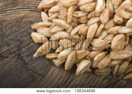 Spoon of Raw Organic Spelt Grain close up on a table