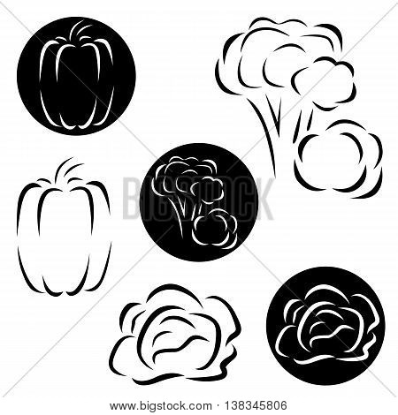 A small set of logo vegetables - broccoli, peppers and cabbage
