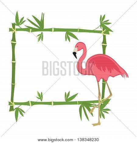 Vector illustration tropical island frame border poster with exotic plants and birds. Bamboo frame. Pink flamingo