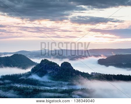Summer Sunrise Forest After Heavy Rain. Beautiful Mountain Within Inversion.