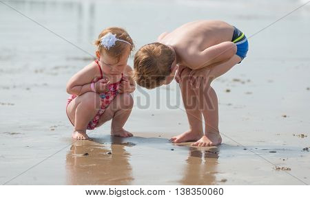 brother and sister family love on the beach. discovering , searching and exploring the beach