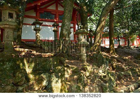Stone Lanterns at Todaiji Buddhist Temple in Nara, Japan