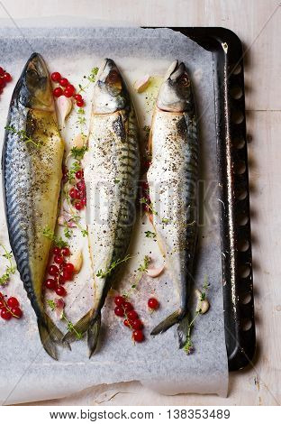 mackerel - a grill with red currant. healthy food. top view. selective focus.