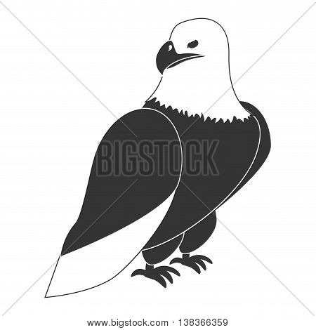 Hawk eagle icon in black and white , vector illustration graphic design.