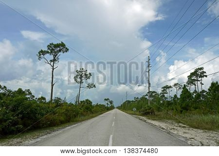 Beautiful view of a road in Grand Bahama. BAHAMAS.