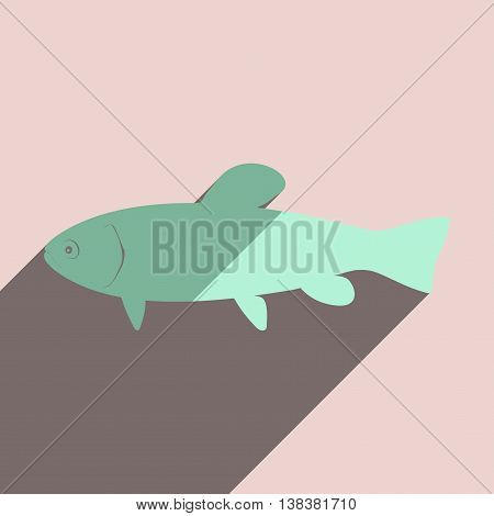 Flat icons with shadow of tench. Vector illustration
