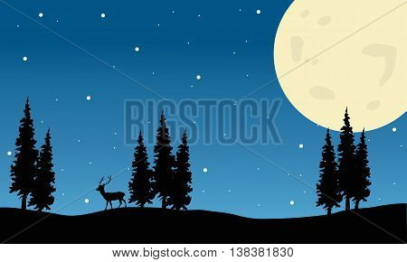 Spruce and deer scenery Christmas of silhouette