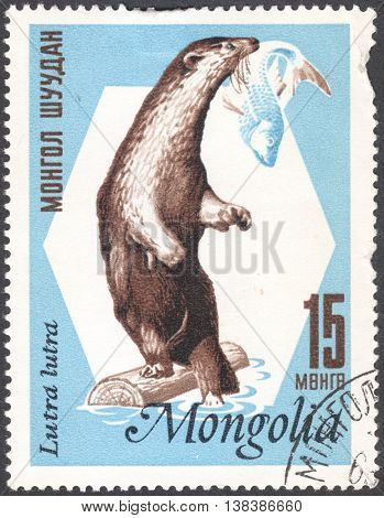 MOSCOW RUSSIA - JANUARY 2015: a post stamp printed in MONGOLIA shows an European otter with the inscription
