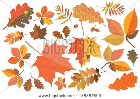 Set of colorful autumn leaves with geometric texture and craquelure