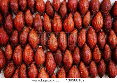 group of Salacca zalacca fruits are the favorite in tropical eating fruit