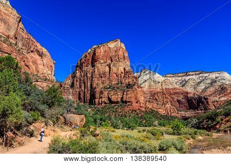Hikers with Angel's Landing in the background at Zion National Park