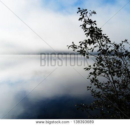 Horizontal Dramatic Norway In Fog Right Aligned Bush Background