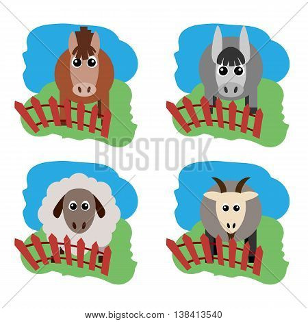 Vector illustration of farm animals and related items. Horse sheep goat a donkey on the grass behind the fence. Grouped for easy editing.