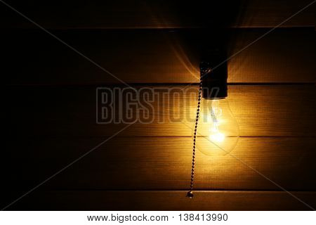 Light bulb on wooden background, close up