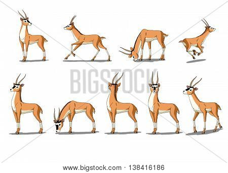 Set of Antelope images. Digital painting full color cartoon style illustration isolated on white background.