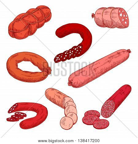 Sausage meat products like wurst or kielbasa. Food made of beef, pork or veal and starch that is grilled or baked. Concept of nutrition with Polish or Frankfurter sausage