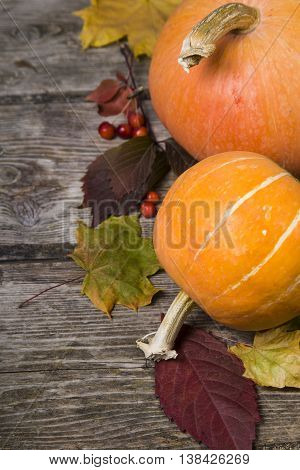 Pumpkins And Fall Leaves On A Wooden Table