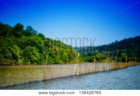Horizontal Vivid Day Fishing On Indian River Background Backdrop