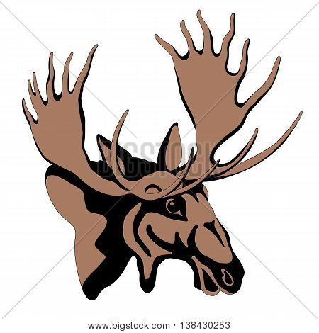 adult moose head color line drawing vector illustration