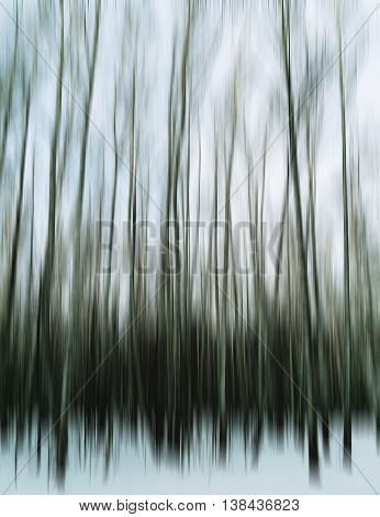 Vertical Motion Blur Trees Art Abstraction Backdrop