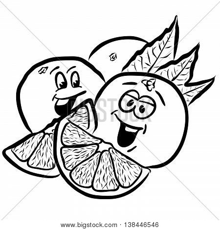 Laughing Oranges Comic Fruits Sketches