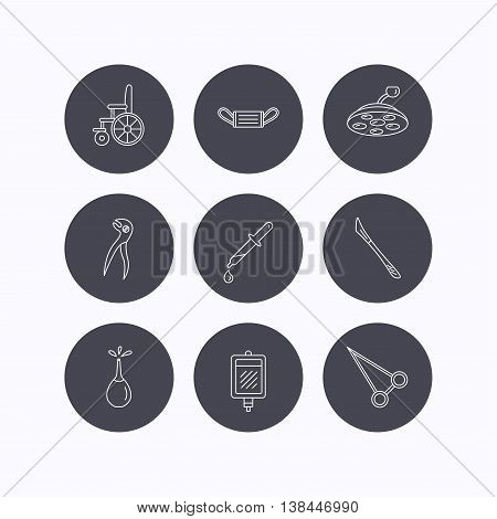 Medical mask, scalpel and dental pliers icons. Pipette, surgical lamp and wheelchair linear signs. Blood donation, clyster and drop flat line icons. Flat icons in circle buttons on white background. Vector