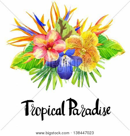 Illustration With Realistic Watercolor Flowers. Tropical Paradise.