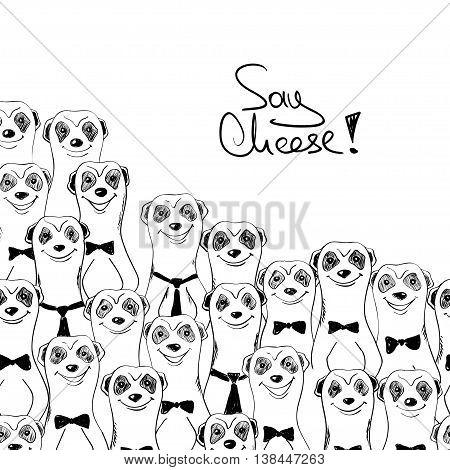 Black and white sketch illustration of funny smiling meerkats. Meerkats posing on camera.