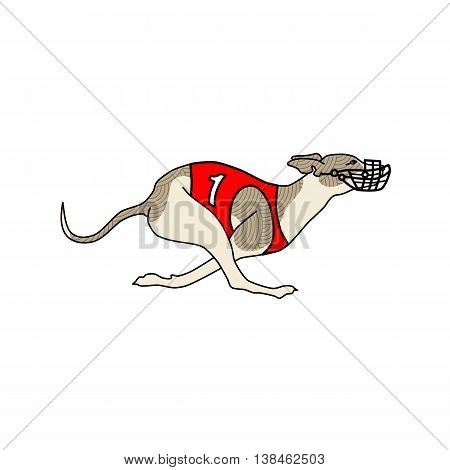 Vector image of running dog whippet breed, in dog racing or coursing dress number one